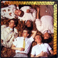"""Review: """"Pelican West"""" by Haircut One Hundred (Vinyl, 1982)"""