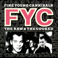 "Review: ""The Raw & The Cooked"" by Fine Young Cannibals (CD, 1988)"
