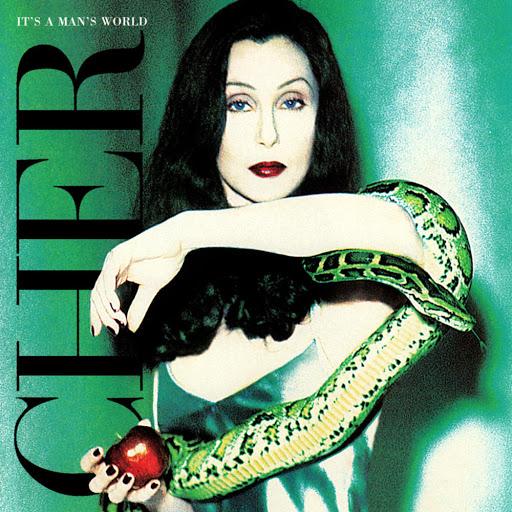 Cher - It's A Man's World (1995) album