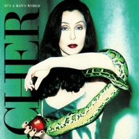 "Review: ""It's A Man's World"" by Cher (CD, 1995)"