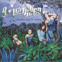 Review: 'Awake and Breathe' by B*Witched (CD, 1999)