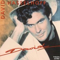 "Review: ""David"" by David Hasselhoff (CD, 1991)"